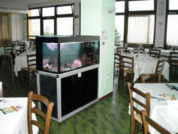 Eybart annunci usato privati e negozi for Acquario arredamento